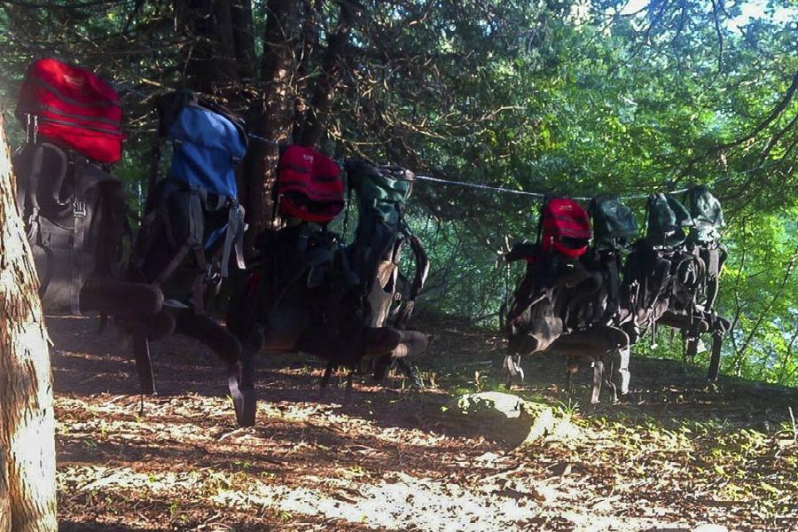Maitland Trail Camp Kintail