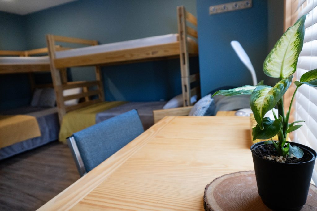A desk with a plant on it with two bunk beds seen in the background inside a Nest private room.