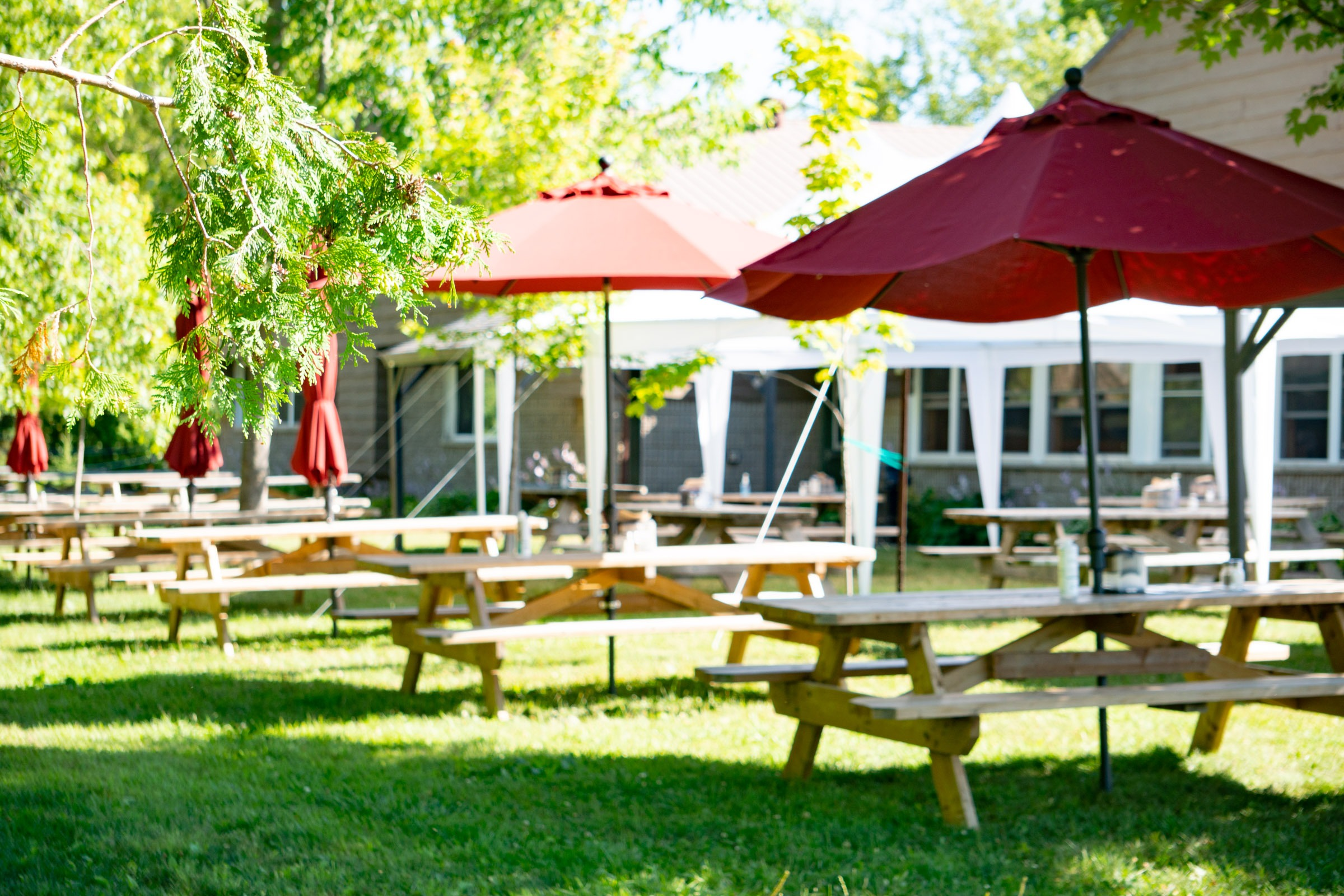 Tent and umbrellas shade picnic tables outside of MacDonald Lodge dining hall.