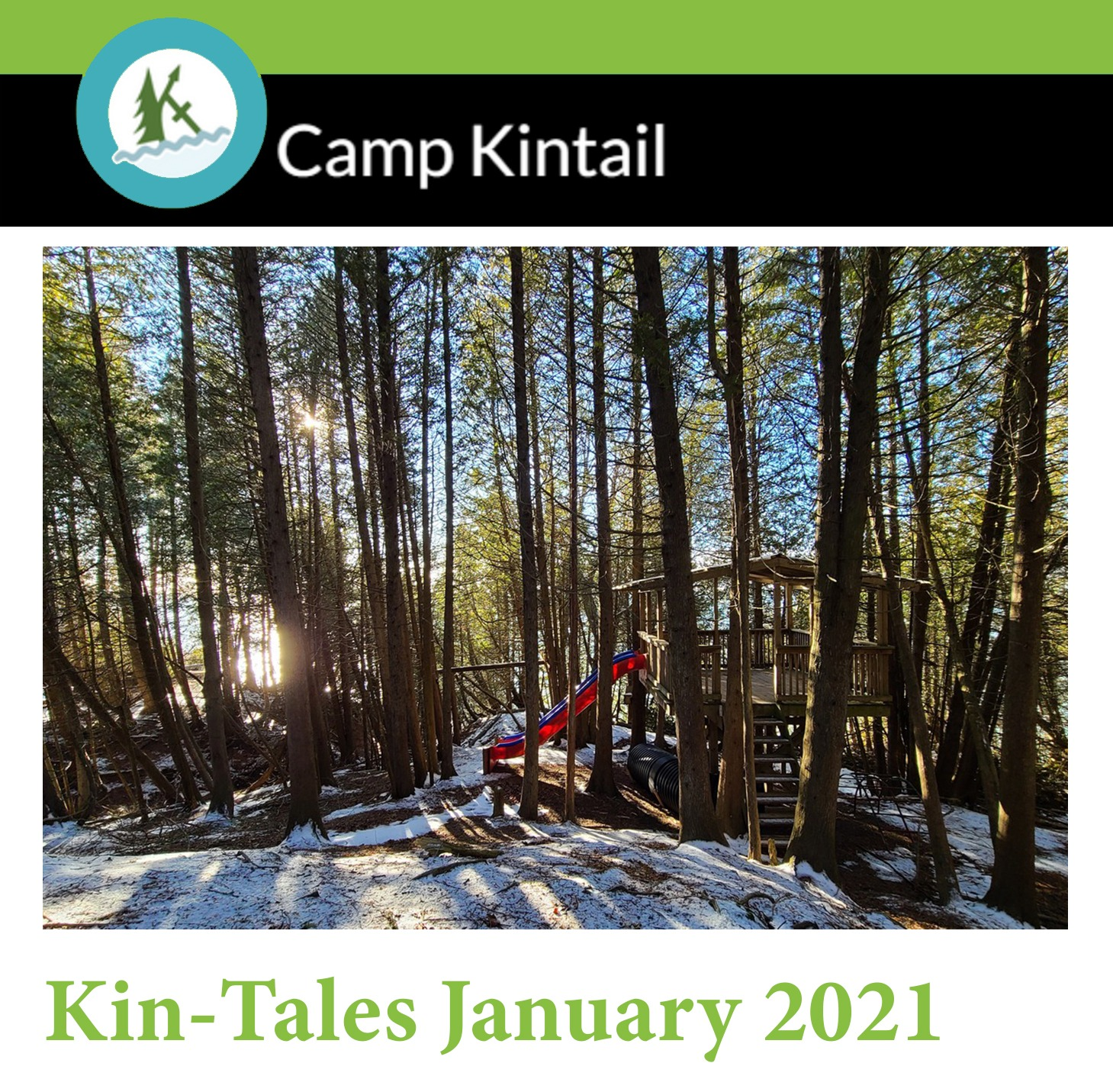 Title Text: Kin-Tales January 2021. Image: Snowy cedar tree forest.