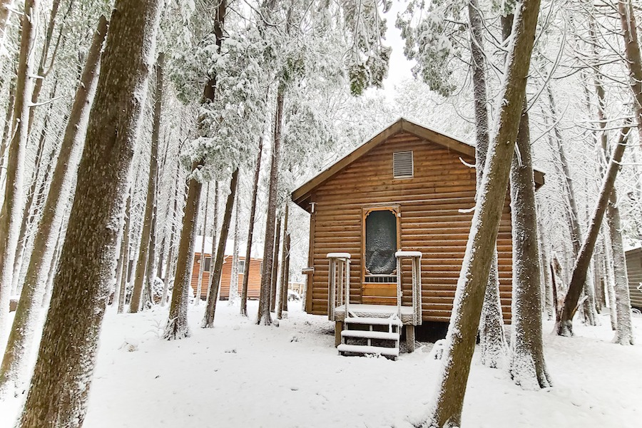 A snow covered cabin located in the midst of cedar trees at camp.