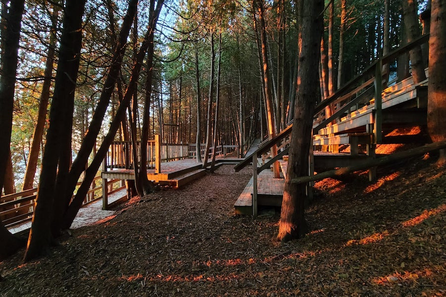 Scenic view of outdoor Chapel with rays of sunlight illuminating the cedar trees and theatre seating.
