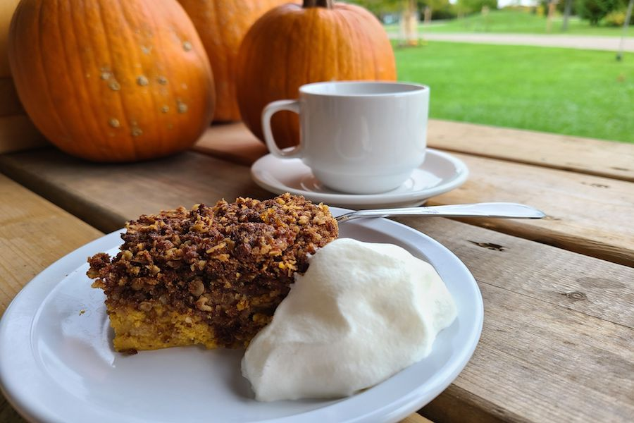 Pumpkin crisp is plated with vanilla ice cream on a picnic table with pumpkins and a cup of tea in the background.
