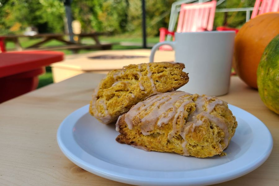 Pumpkin scones on a white black that is on a picnic table beside a white mug and pumpkins.