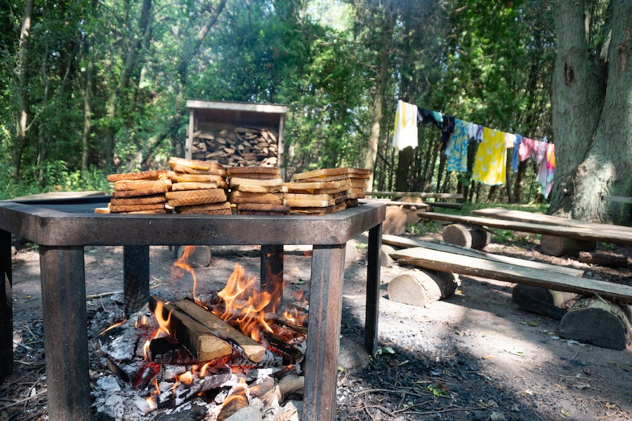 Grilled cheese sandwiches are cooked on a metal grate over a campfire located amongst cedar trees at summer camp.