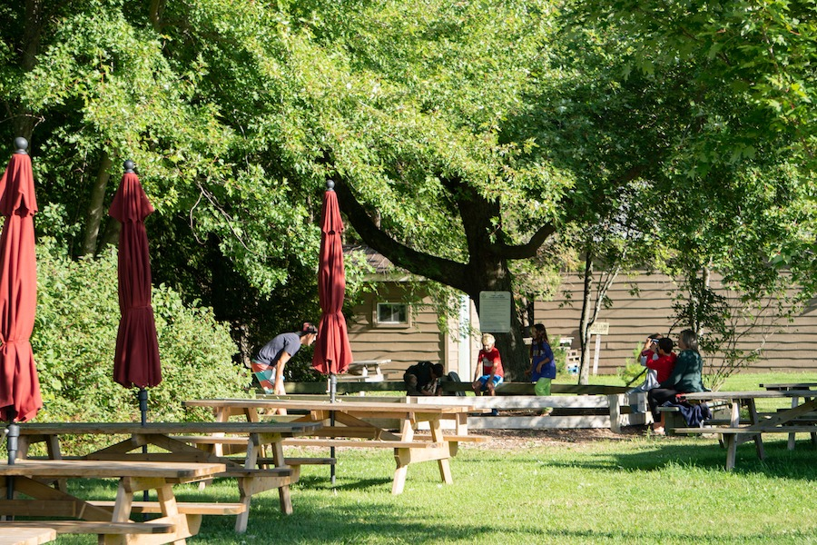 Participants are seen in the distance behind picnic tables playing a game of gaga-ball at summer camp.