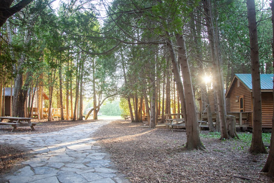 Scenic view of cabins along cobblestone pathway surrounded by cedar trees at overnight summer camp.