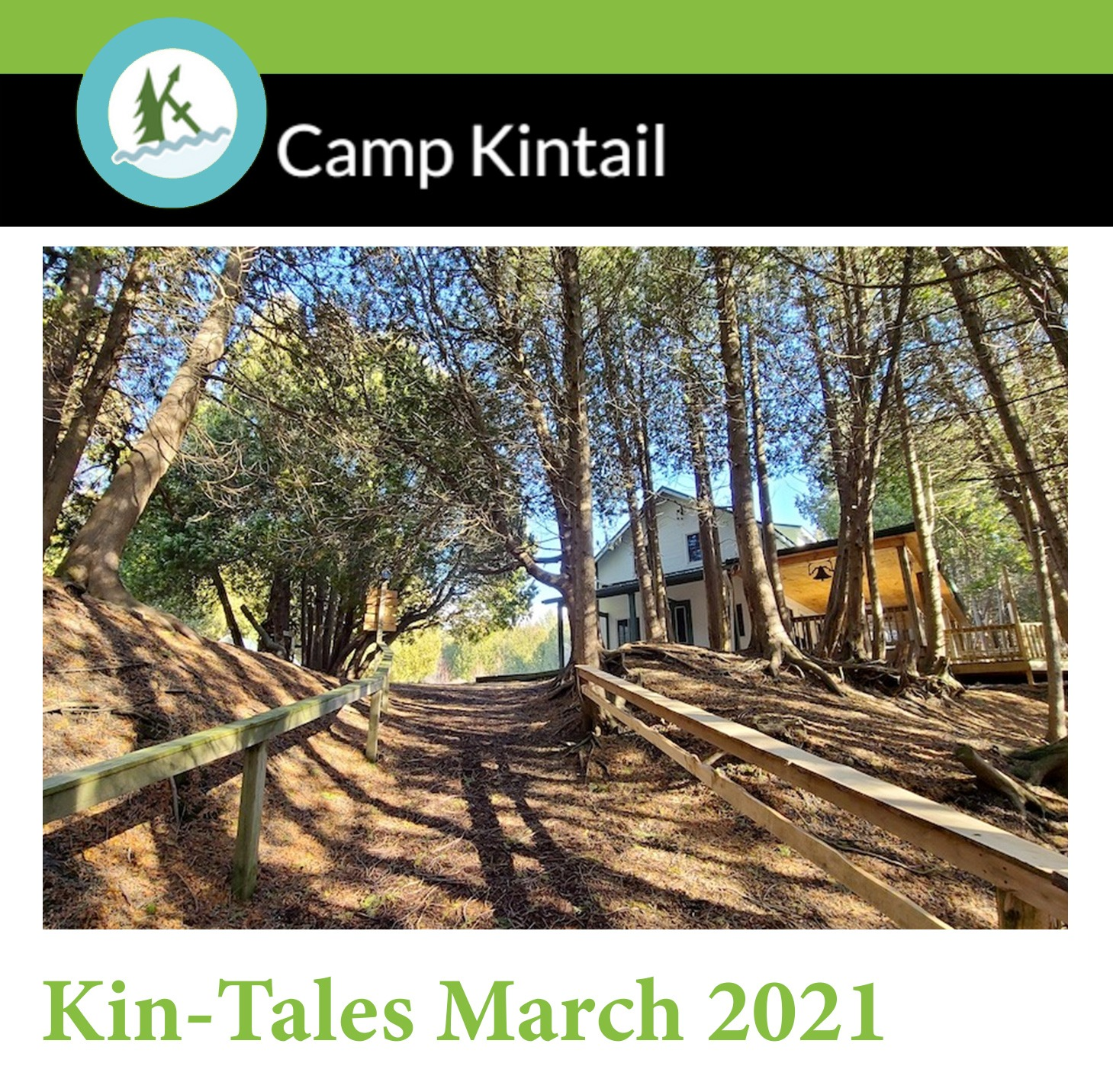 Title Text: Kin-Tales March 2021. Image: Forest with warm sunlight.